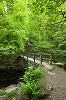 Ash Bridge over the East Lyn River in Barton Wood in Exmoor National Park near Watersmeet, Lynmouth, Devon, England.