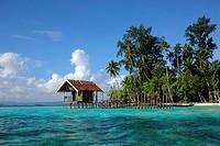 Raja Ampat, Papua, Indonesia, Southeast Asia.