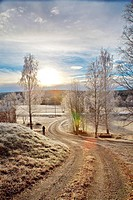 Man standing on a gravel driveway on a frosty autumn morning. Kubbe, Västernorrland, Sweden.