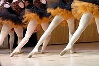 Ballet Dancers Performing During Recital, Geneseo, New York, USA.