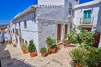 Frigiliana, Axarquia, Costa del Sol, Malaga province, Andalusia, Spain.
