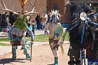 Buffalo & rain dance of Sky City, Acoma pueblo, New Mexico.