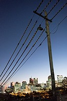 pole and protected power lines with view of North Sydney lights.