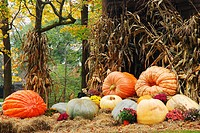 Massive pumpkins and autumn décor are found throughout October in the Vermont Countryside