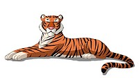 Digital painting of the Bengal tiger isolated on white background.