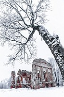Winter landscape with the ruins of the old church and snow-covered trees.