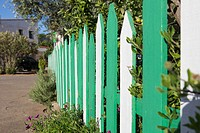 green and white fenced in a garden