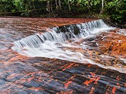 Quebrada de Jaspe, Bolívar, Gran Sabana, Venezuela, South America River, red Jaspis, water surface, Leaf, drives South America, Bolivar Canaima Nation...