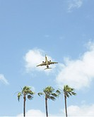 Airplane taking off from San Diego International Airport with three palm trees below and a blue sky with clouds in the background