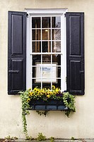 Window Decorated with Flowers in the Charleston Historic District, South Carolina.