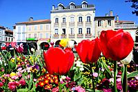 Square of the Flowers of Montrejeau, Midi-Pyrenees, France.