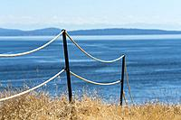 water, fence, grass, East Point