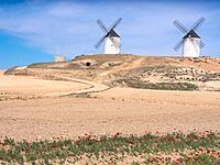 Spain, Castile-La Mancha, Province of Ciudad Real, the famed Don Quixote´s Windmills at Tembleque