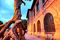 Artistic tree carving in Old Schools of Bustarviejo, Madrid, Spain.
