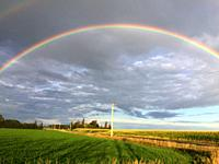 A rainbow across fields of soyabeans, Ontario, Canada. There's a faint second rainbow also.