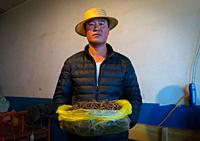 Hui man seller with a bag full of caterpillar fungus costing thousands of dollars, Qinghai province, Sogzong, China.