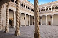 Central Courtyard. Sculpture National Museum Valladolid. Valladolid. Castilla Leon. Spain..