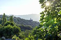 View of a village with the Church. Santo-Pietro-di-Tenda, Corsega, France.