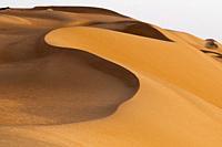 Wahiba Sands desert, Oman.