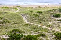 Avon, Outer Banks, North Carolina, USA. Children Going over Barrier Island Dunes en route to the Atlantic Beach.