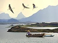 fisherman with a pirogue on the Senanayake Samudraya Lake, Gal Oya National Park, Sri Lanka, Indian subcontinent, South Asia.