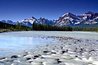 Canadian Morning, Canadian Rockies, Alberta, Canada