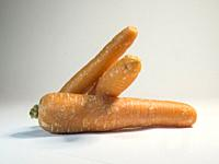 Three carrots on white background.