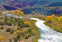 Rio Chama, New Mexico, Autumn.