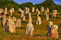 Carnac, Megalithic stones, Megalitic alignments, Morbihan, Bretagne, Brittany, France, Europe.