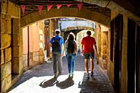 Guide and group of tourists visiting the city, Pasai Donibane, Pasajes de San Juan, Gipuzkoa, Basque Country, Spain, Europe