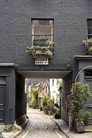 Warren Mews street, London. A small street near to warren street. Is beautifull to see places like this in te center of a big city.
