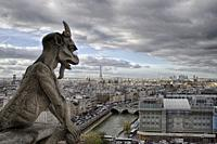 Gargoyle of Notre dame cathedral, a typical view from the higher part of the cathedral.