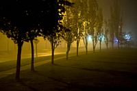 Suburban street on foggy night. Oakville, Ontario, Canada.