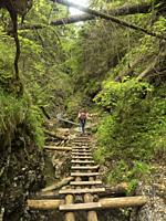 Slovakia, Slovak Paradise mountain range, tourist track