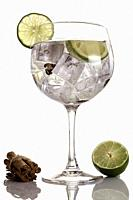 Gin tonic with lime and cinnamon sticks on white background.