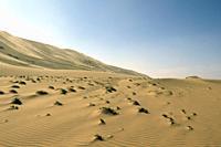 Dunes, Gobi desert, Mongolia.