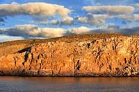 San Francisco island, Sea of Cortes, Baja California Sur, Mexico.