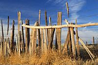 Corral fence, Hubbell Trading Post National Historic Site, Arizona.