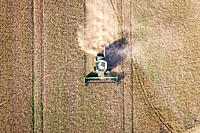 Aerial view looking directly down at a combine harvester driving through rows of soybeans and kicking up dust, Maryland, USA.