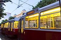 Vienna, Austria Street Tram, Trolley.