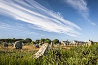 The Ménec alignments, the most well-known megalithic site among the Carnac stones (department of Morbihan, region of Bretagne, France).
