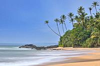 Tropical Palm Tree beach in Dondra, Sri Lanka, Asia.