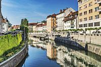 View over the river Ljubljanica to the promenade and to the historic houses of the old town of Ljubljana, Slovenia, Europe.
