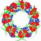 wreath of red blossoming poppies, green unblown buds and blue hyacinths isolated against a white background