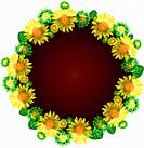 round wreath of yellow blossoming sunflowers, inside empty space, flowers are isolated on white background