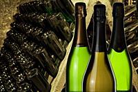 Cava (Sparkling wine) bottles