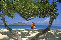 heart-shaped tree on a beach of Palm Island, Grenadines islands, Saint Vincent and the Grenadines, Winward Islands, Lesser Antilles, Caribbean Sea.
