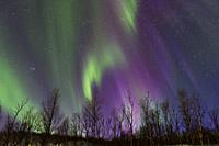 An aurora sometimes referred to as polar lights, northern lights (aurora borealis) is produced when the magnetosphere is sufficiently disturbed by the...