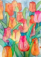 Tulips artwork with black contour art nouveau style digital illustration closeup.