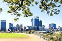 Tree framed view of the Perth city CBD from Kings Park, Western Australia, Australia.